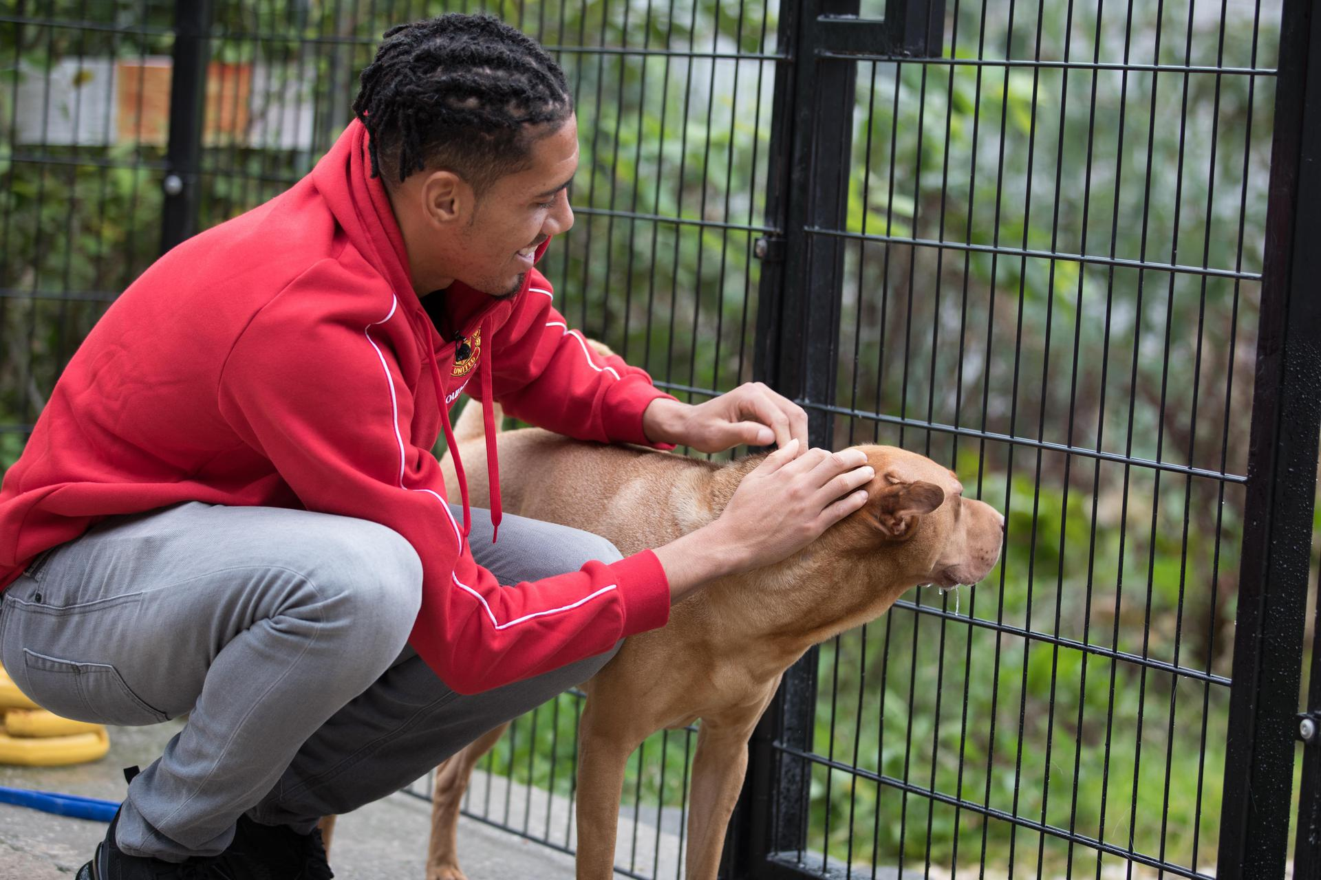 Gallery Of Chris Smalling Visiting Manchester Dogs Home Manchester United